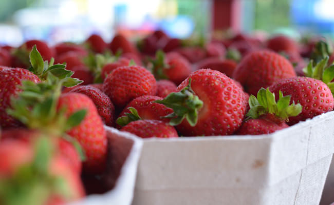 Bäcker's Erdbeeren frisch vom Feld in Münster