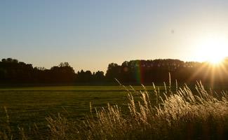 Sonnenuntergang in Münster nahe Bäcker's Erdbeer- und Spargelhof