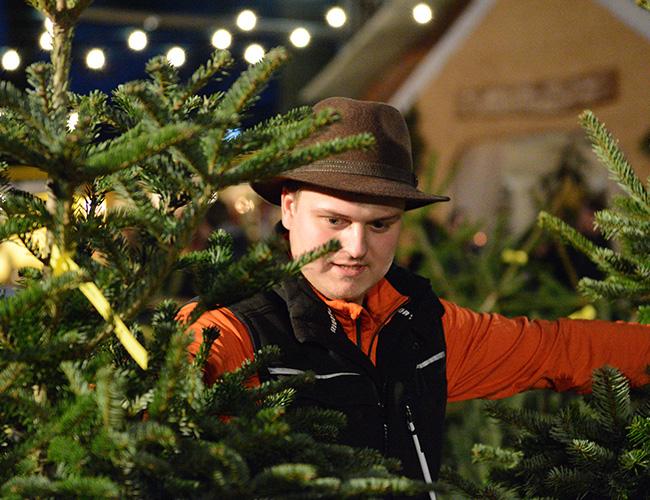 Weihnachtsbaumverkauf auf Bäcker's Erdbeer -und Spargelhof in Münster